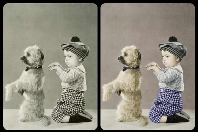 How to restore black and white photos in 10 steps